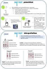 protocole dip test